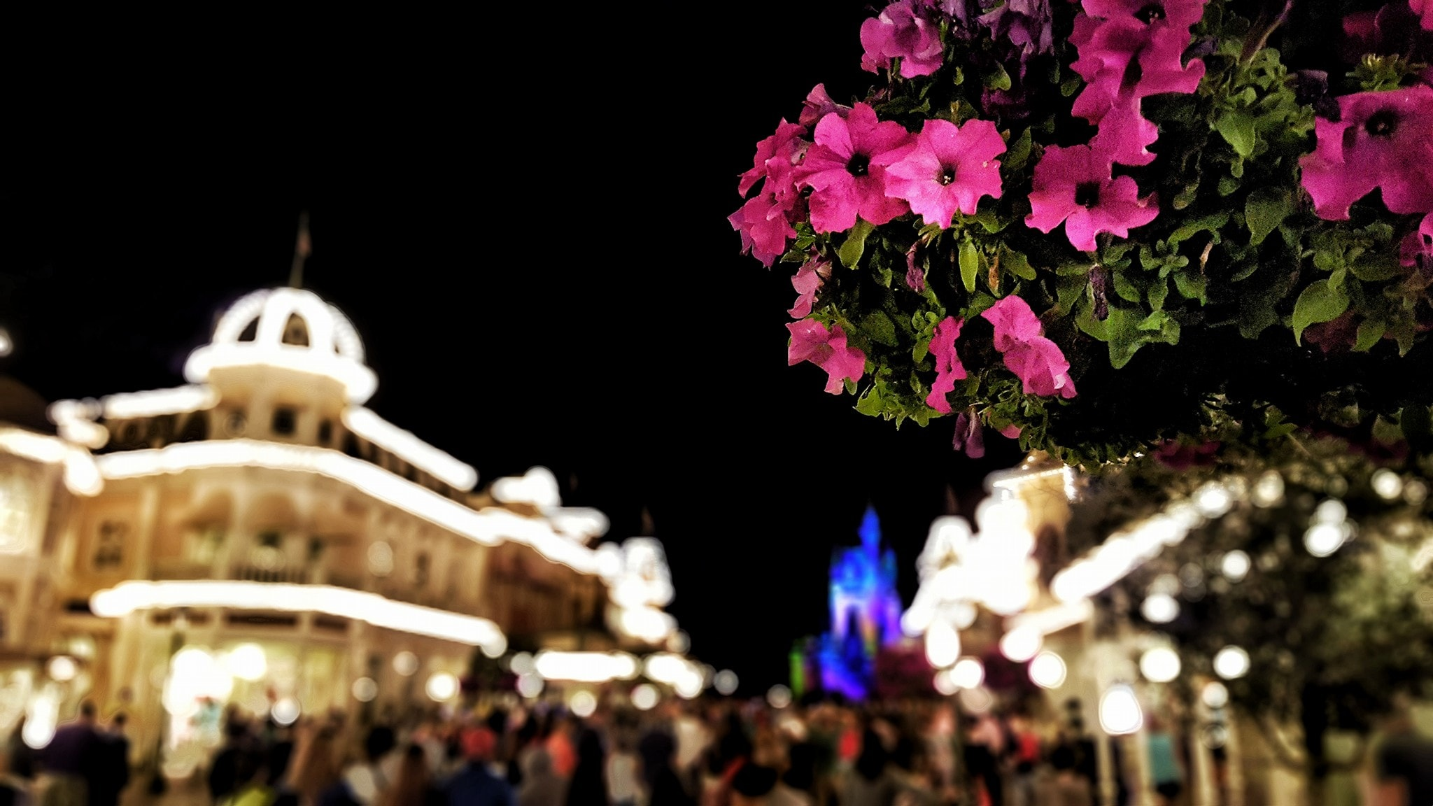 How to plan a Disney World Vacation with these Walt Disney World Vacation Tips. These Disney World Vacation Tips and Tricks can create a more magical experience.