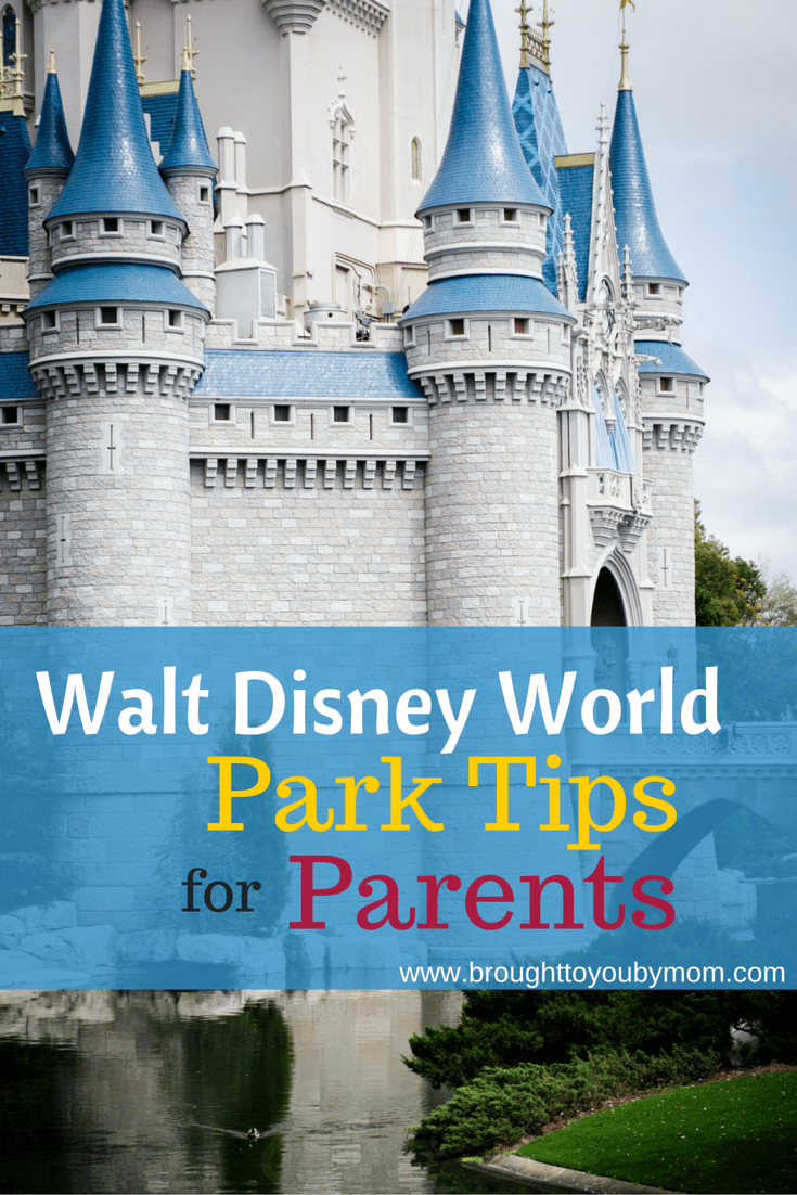 Check out some great Walt Disney World Park tips for parents. Everything from tips for dining reservations to planning your trip with toddlers and young children.