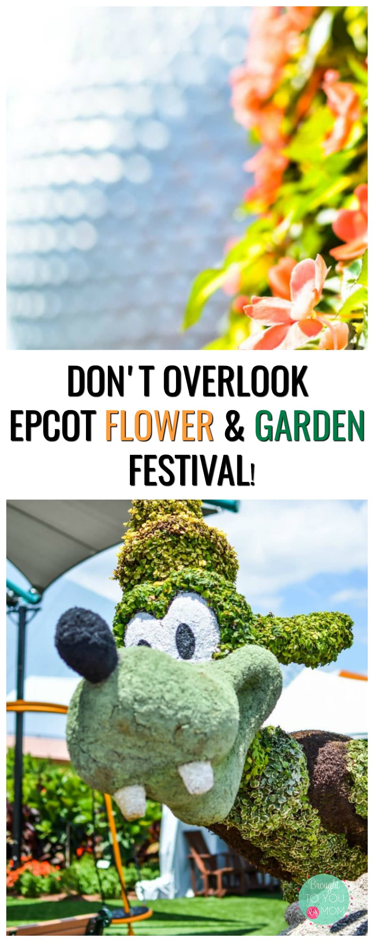 There are plenty of reasons why you shouldn't overlook Epcot Flower and Garden Festival. This flower and garden festival is one in a million. The Disney World Flower and Garden Festival is filled with food, fun, flowers, and so much more! The Flower and Garden Festival 2018 starts now! #freshepcot #epcot #disney #travel