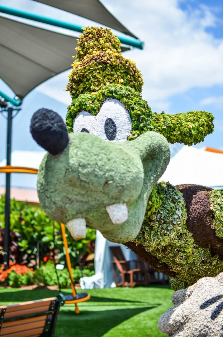 Don't overlook the Epcot Flower and Garden Festival at Walt Disney World. The Topiaries, Concerts and Outdoor Kitchens bring on a new flavor of travel fun.