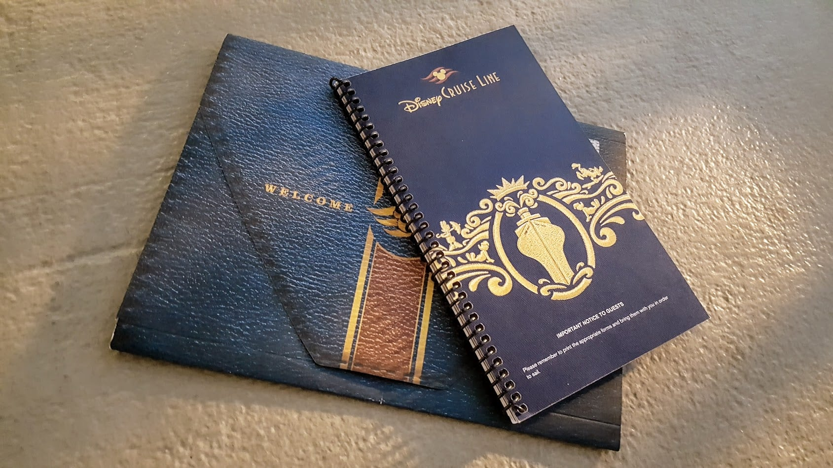 Disney Cruise Documents