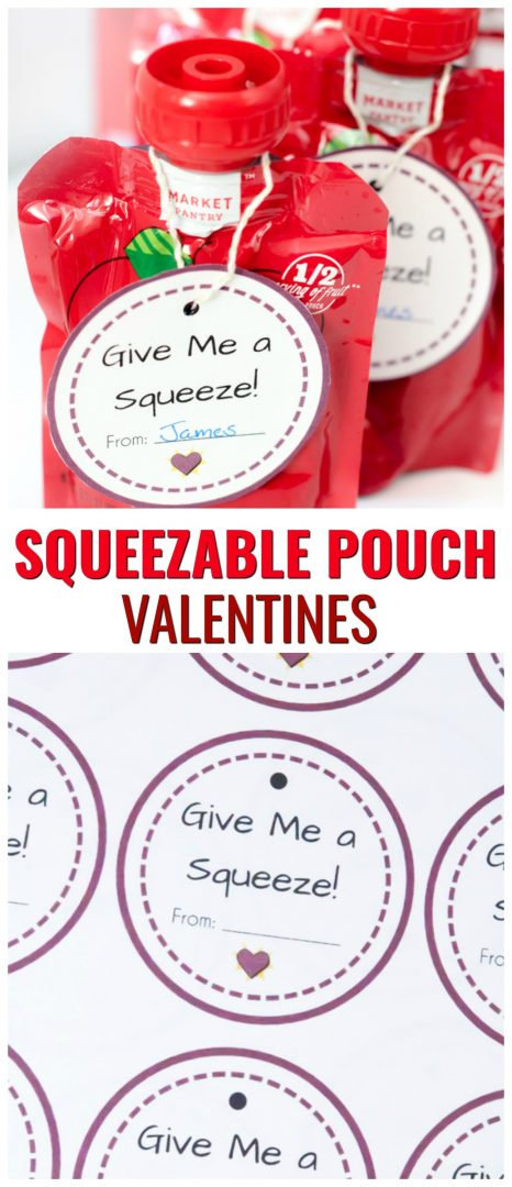 Squeezable Pouch Valentines. Non-candy Valentine ideas that are great for toddler themed Valentines. A free Valentine printable for kids.