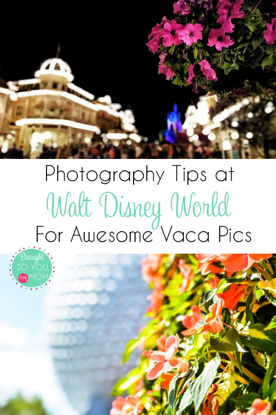 Disney World Photo Tips