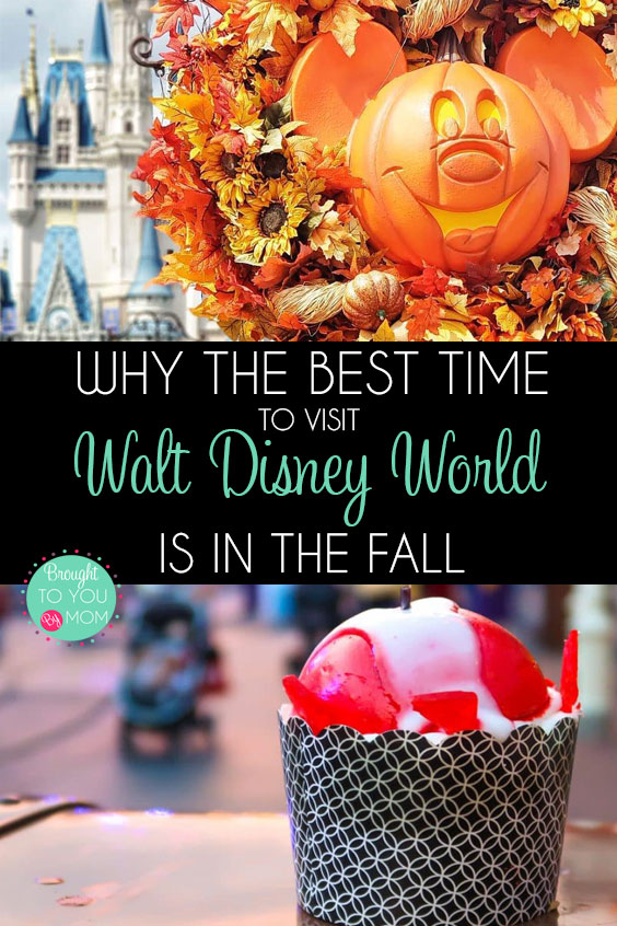When is the best time to visit Walt Disney World
