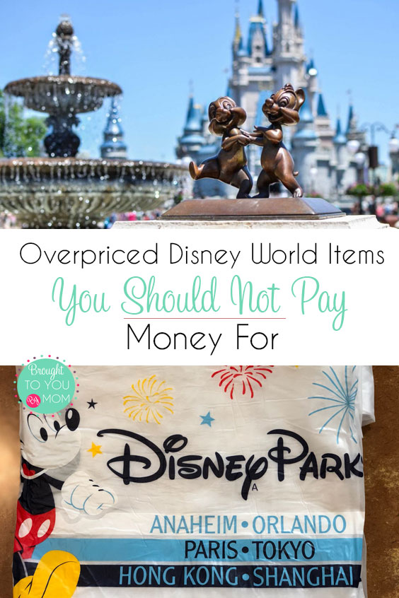 Overpriced Items Not to Buy at Walt Disney World