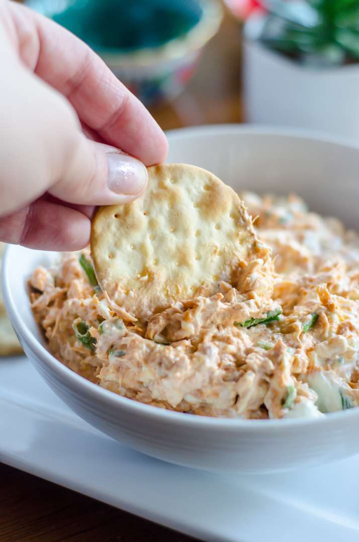 tuna dip with cracker being dipped into it