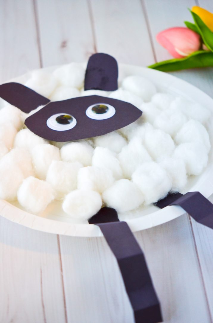 paper plate sheep with cotton balls
